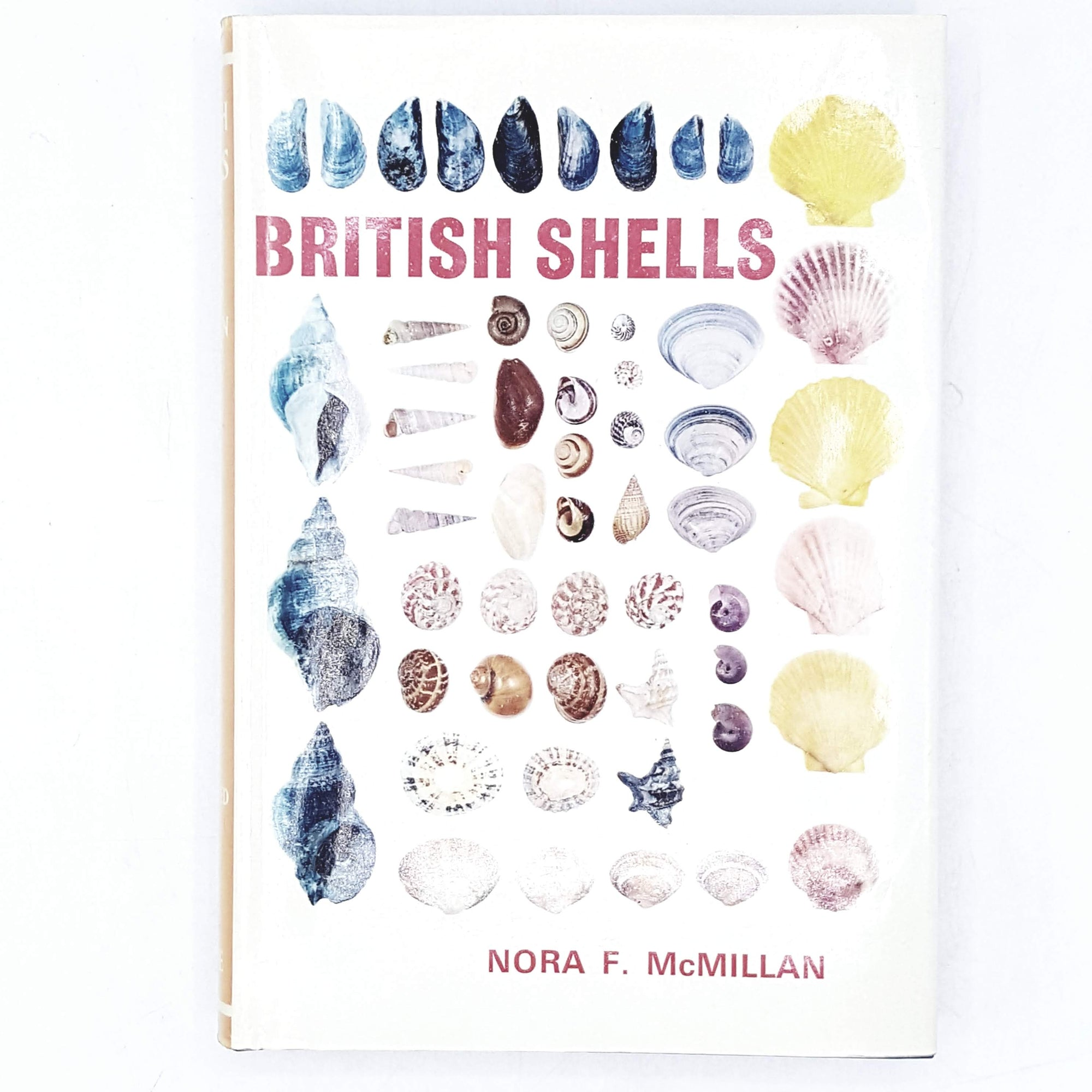 British Shells by Nora F. McMillan 1973