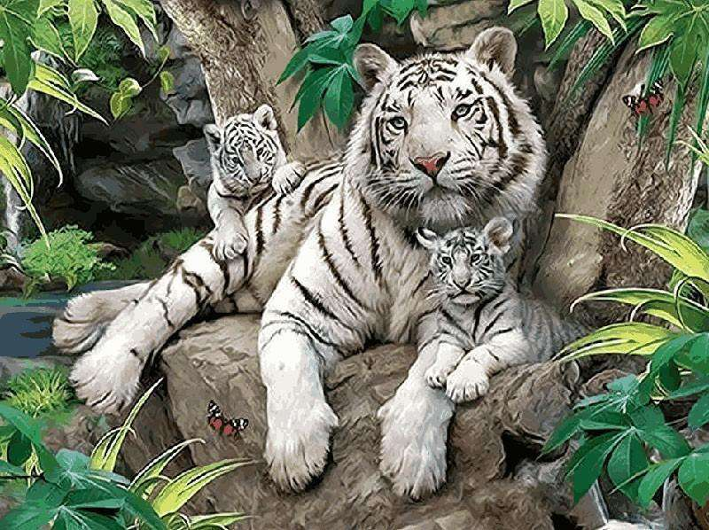 Bengal Tiger - Paint by Numbers Kits for Adults DIY