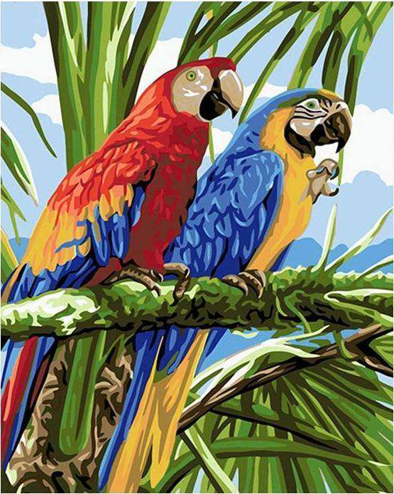 Macaw Rainforest Bird - Paint by Numbers Kits for Adults DIY
