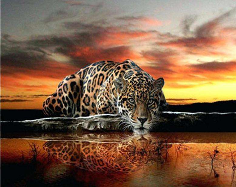 Sunset Savannah Leopard - Paint by Numbers Kits for Adults DIY