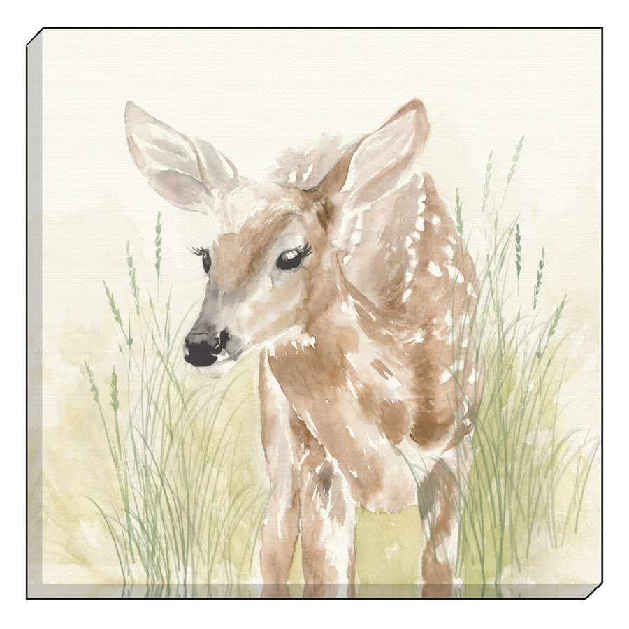 Watercolour Fawn Canvas