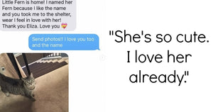 This Grandma Adopts A Cat And The Resulting Texts Are Adorable