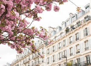 Blossom Season in Paris - Every Day Paris