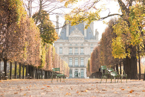 Autumn Light in the Tuileries - Every Day Paris