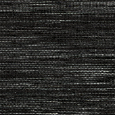 Scalamandre Wallcovering - SC 0012WP88347 - SHANTUNG GRASSCLOTH - BLACK PEPPER