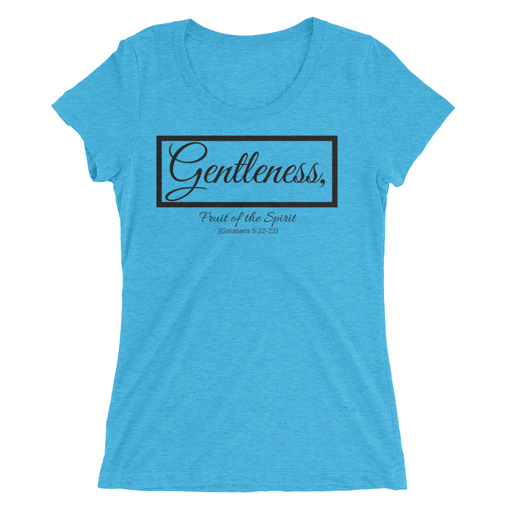 Aqua Blue Gentleness Ladies' Triblend T-shirt