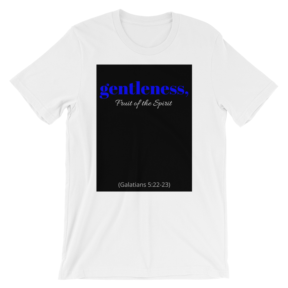 Fruit of the Spirit- Gentleness Men's T-Shirt