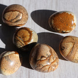 Picture Jasper Tumbled Stones - little-gems-metaphysical-store
