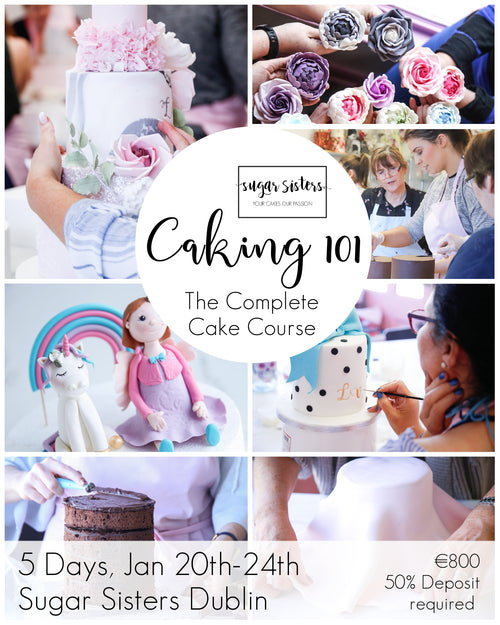 Caking 101 - The Complete Cake Decorating Course - 5 Days, Jan 20th-24th - Dublin