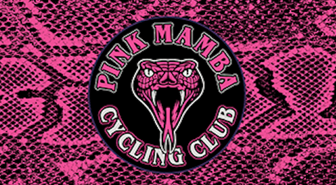 Pink Mamba RACEDAY BAG - ships in about 3 weeks