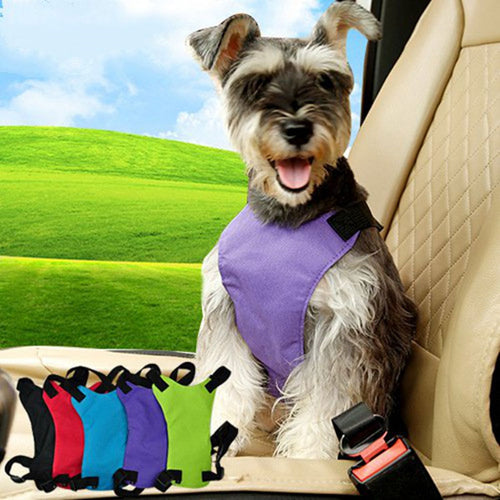 Pet Dog Cat Vehicle Safety Seat Belt- Chihuahua
