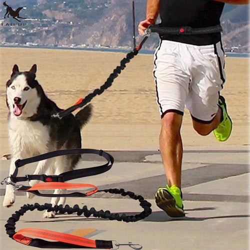 Pet's Running Elasticity Hand Free Harness Collar Adjustable Waist Rope