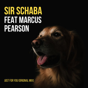 Artist: SirSchaba Feat Marcus Pearson  Song:Just For You (Original Mix) Label:YME Music Publisher: YME Music code:W6B-18-00005