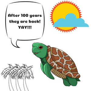 Shelly the Sea Turtle - After 100 years they are back.png
