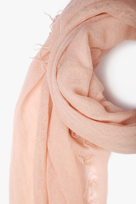 Cameo Rose Cashmere and Silk Scarf