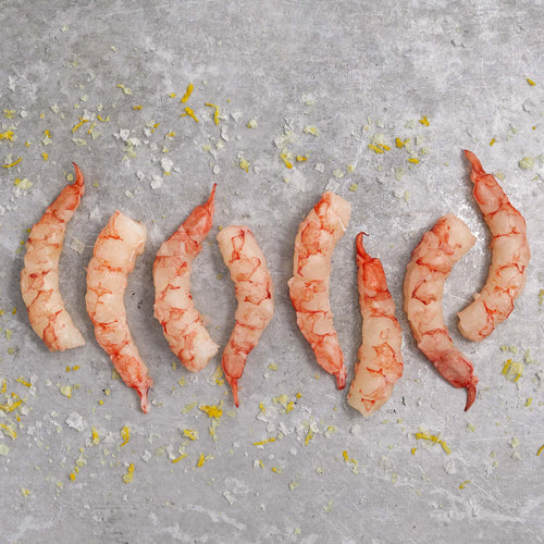 Argentine Red Shrimp - Argentine Red Shrimp