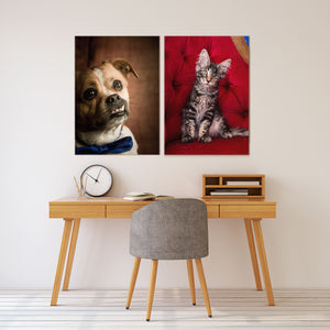 Portrait of Cat & Dog - Pet Photography