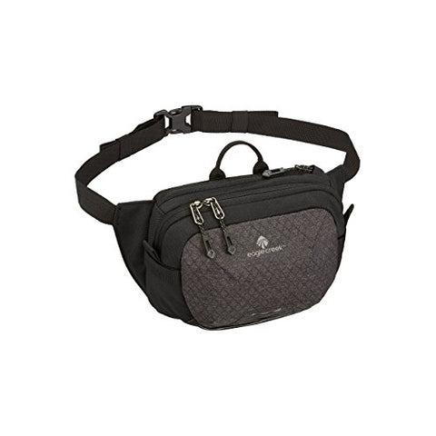 Eagle Creek Wayfinder Waist Pack Multiuse Fanny Pack for Travel Sport Waist Pack for E-reader & Phone Passport Wallet, Black/Charcoal