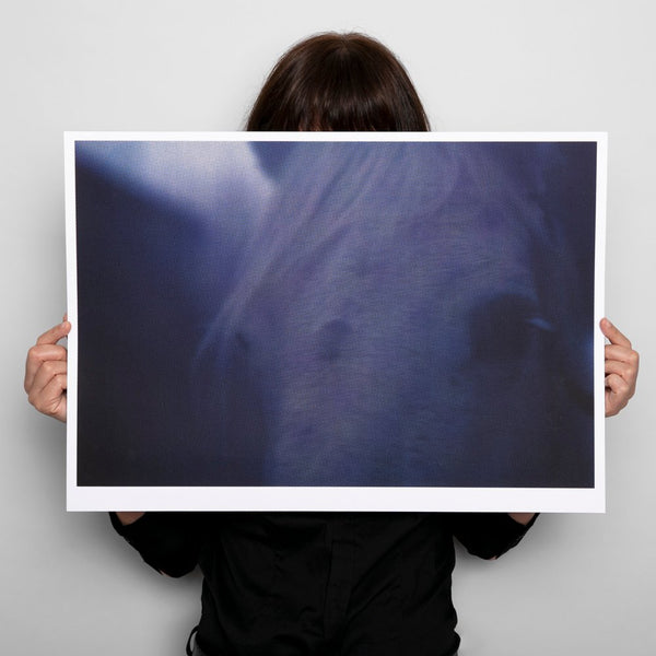 White Horses Screenprint, Johnny Savage