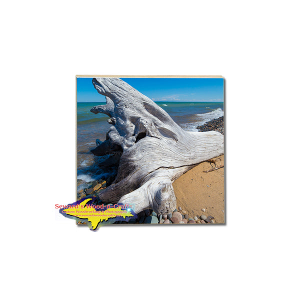 These Beautiful Lake Superior Driftwood Coasters & Trivets would make a perfect Michigan Gift!