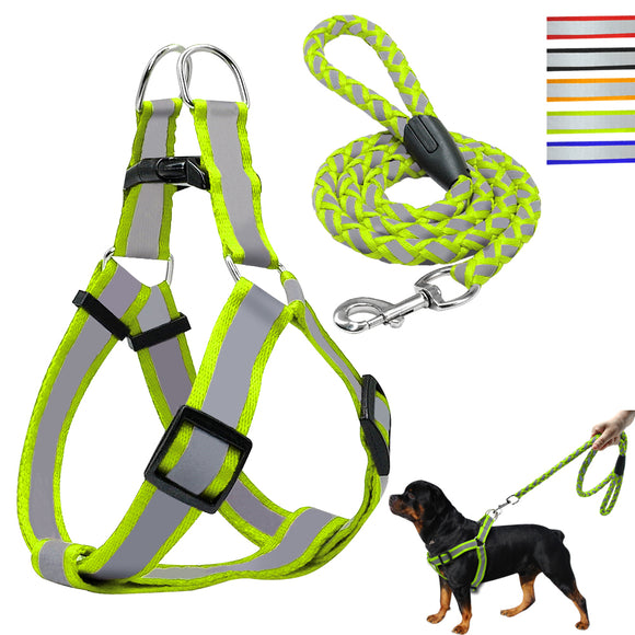 Step-in Dog Harness & Walking Leash Set | No Pulling, Reflective Nylon - Swag for My Dog