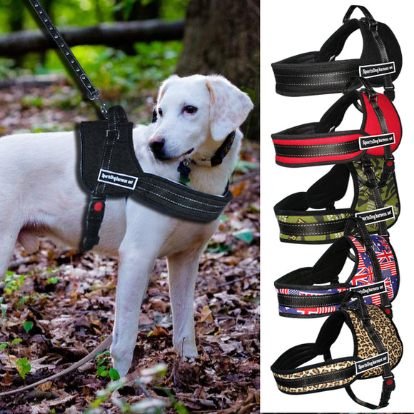 Heavy Duty Dog Training Harness - Swag for My Dog