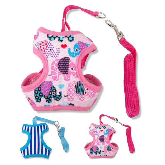 Stripe Printed Puppy Small Canvas Dog Harness and Walking Leads Set - Swag for My Dog