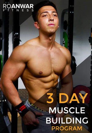 3 Day 'Muscle Building' Program