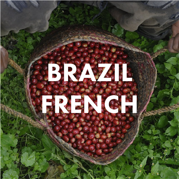 Brazil French Roast | Telegraph Coffee & Tap