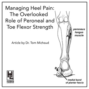 New Article For Those Suffering From Chronic Heel Pain