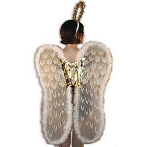 Angel Wings with Headpiece