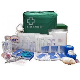 First Aid Kit Small Catering In a Green Bag