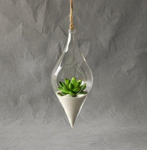 Creating Your Own Terrarium: Bringing the Outside In