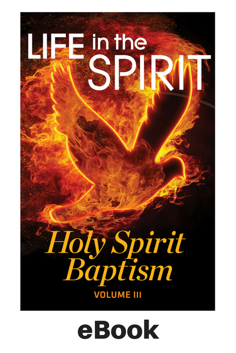 eBook - Life in the Spirit - Holy Spirit Series VOL.3