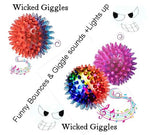 3 Dog Ball Toys With Funny Wicked Giggles Led light and Goofy Teasing Bounces Only 1 Left!