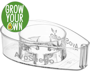 AvoSeedo DIY Clear Avocado Tree Growing Bowl
