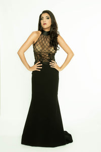 Fishtail Skirt with Transparent wrap around Top