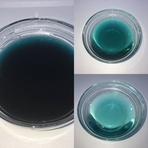 Midnight Blue - EazyColours Water Soluble Dye (FDA)