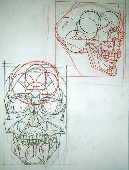 illustration of a skull with geometric circles and shapes creating its outline