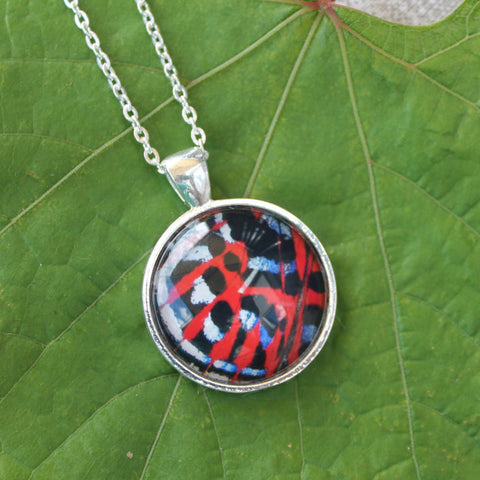 Malayan Red Harlequin Butterfly Wing Necklace, Glass Butterfly Pendant, Butterfly Necklace, Picture Pendant with Butterfly, Entomology