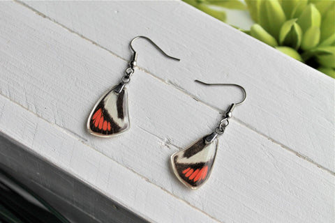 Colotis Daira Wing Earrings, Red and Black Wings, Butterfly Wing Earring, Butterfly Wing Preserved, Wing Encased in Resin, Entemology