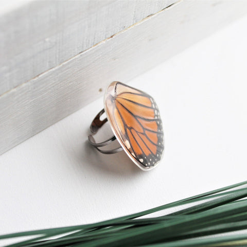 Real Monarch Wing Ring, Monarch Ring, Real Wing Ring, Orange Butterfly, Danaus Plexippus Ring, Zoology Ring, Entomology Ring, Insect Ring