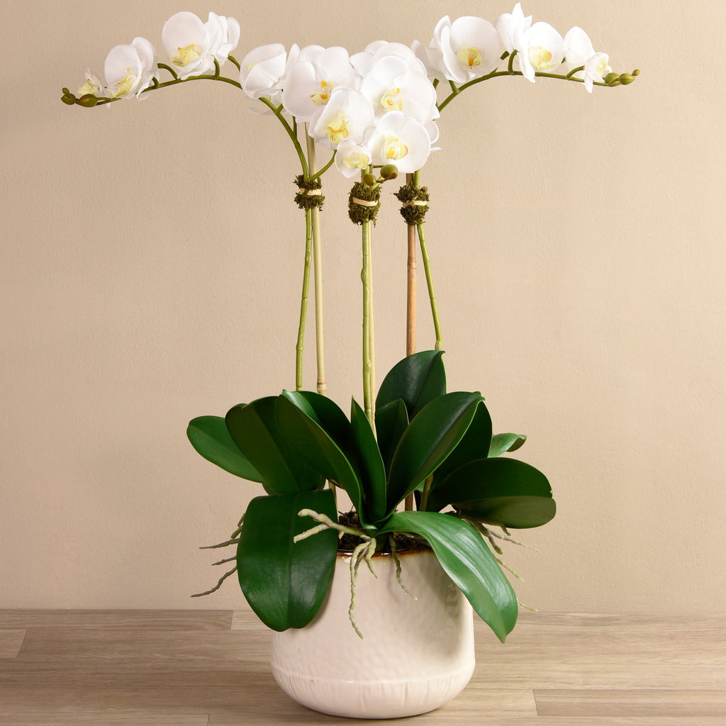 Artificial Bistro Orchid Arrangement, Faux Bistro Orchid Arrangement, Fake Bistro Orchid Arrangement  - Bloomr