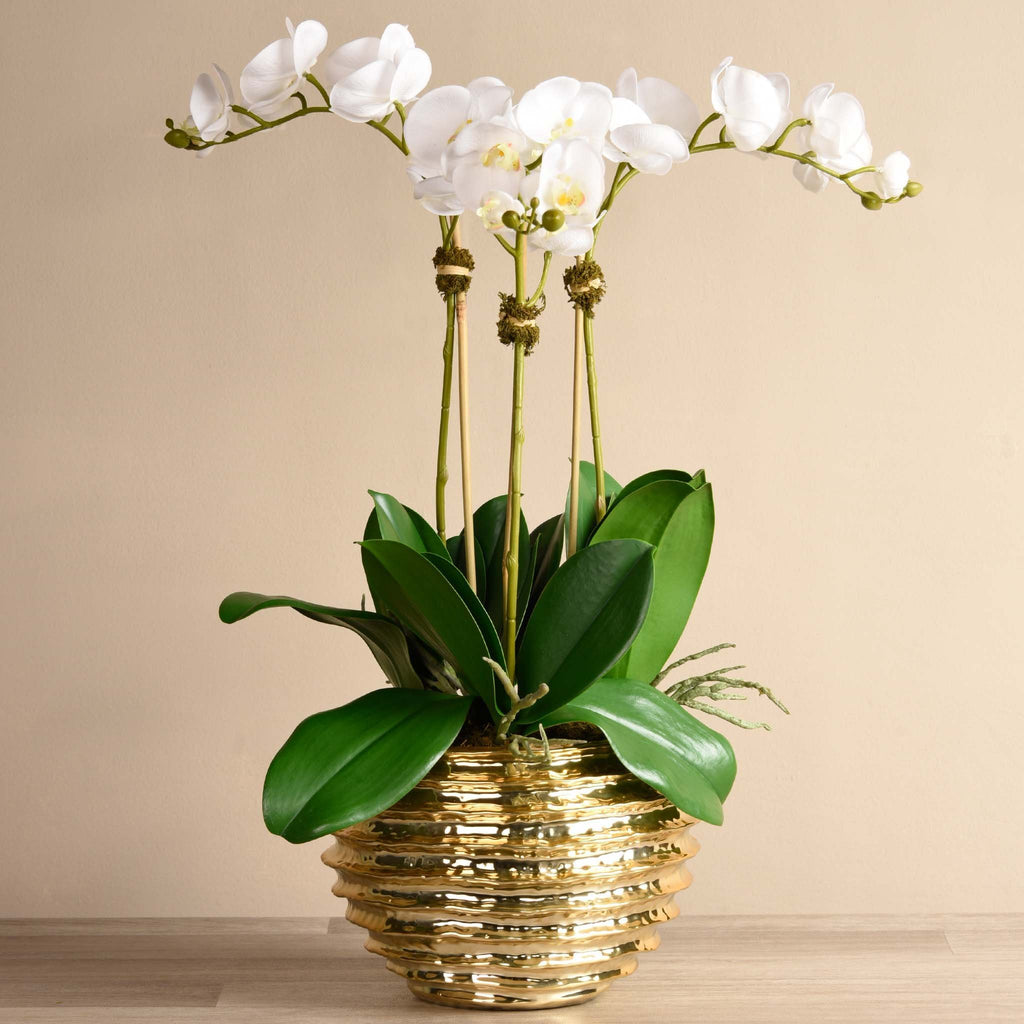 bloomr-usa Flowers Large / White Majestic Orchid Arrangement artificial flowers artificial trees artificial plants faux florals