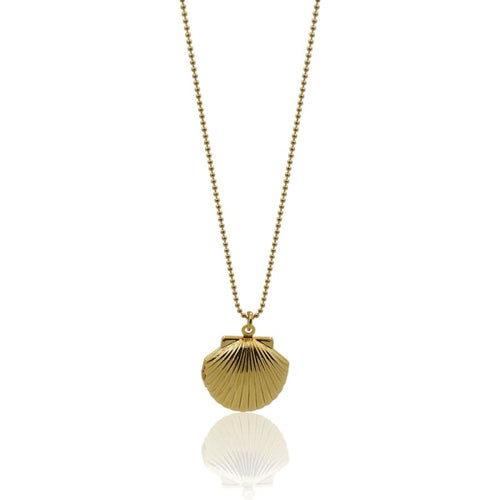 Shell Locket Long Gold Necklace 30 necklace