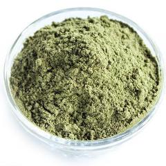 ACTIVATE MATCHA BLEND by Amoda