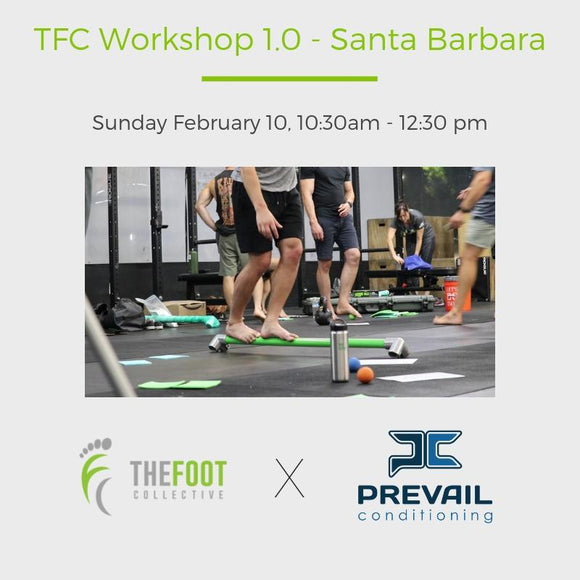 Workshop 1.0 - Santa Barbara. February 10, 2019