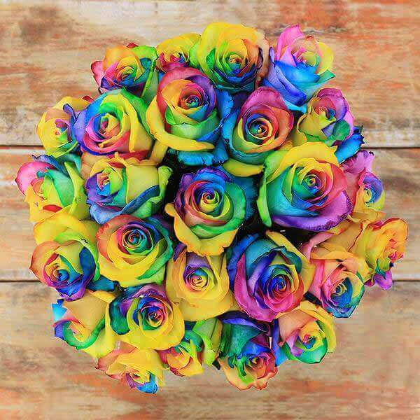 Rainbow Rose Bouquet - Rosaholics