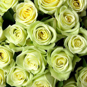yellow green roses delivery