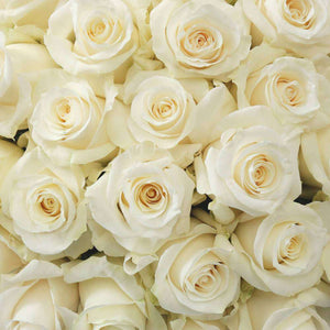 purchase white rose bouquet